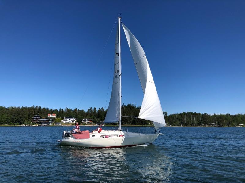 fin segling